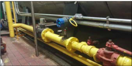 Magnetrol TA2 thermal mass flow meter in the field